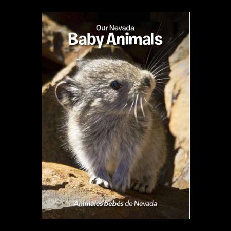 Final Baby Animals